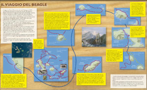infografica Galapagos